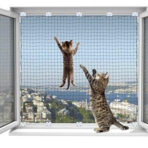 Kedi Güvenlik Ağları